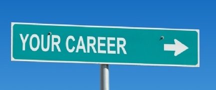Find Your Niche, Career Tests That Help You Overcome The Paradox Of Choice